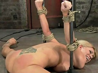 Flexible Blond Milf Is Tied In The Splits We Cane Flog Make This Mom Cum Like A Whore Hdzog Free Xxx Hd High Quality Sex Tube