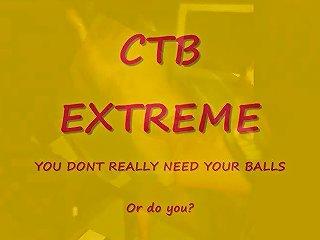 Cbt Extreme Photo Video Free Amateur Porn Df Xhamster