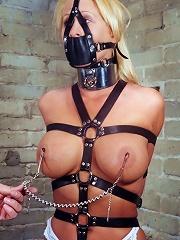 Threesome BDSM Sex