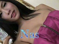 Titilicious Thailand Ladyboy Dolls